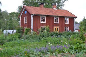 Ett rött hus med köksträdgård framför.