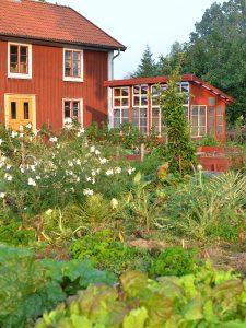 Ett fint falurött växthus i Skillnadens trädgård.