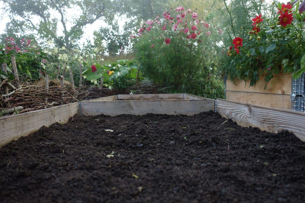 Närbild på pallkrage med svart jord och blommor i bakgrunden.