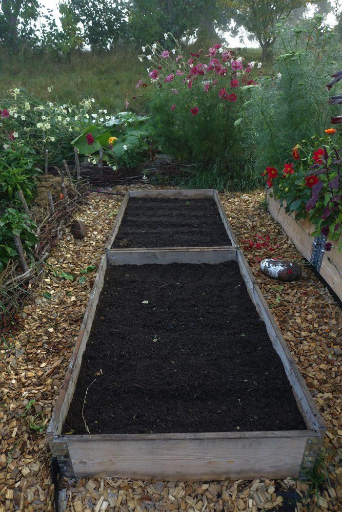 Pallkragar med jord omgiven av växtplatser med grönt och blommor.