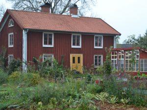 En höstig köksträdgård framför ett rött boningshus.