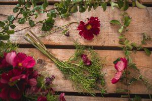 Rosenskära som snittblomma