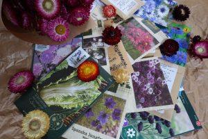 Fröpåsar ligger utspridda på ett brunt papper och intill ligger en bunt torkade blommor.