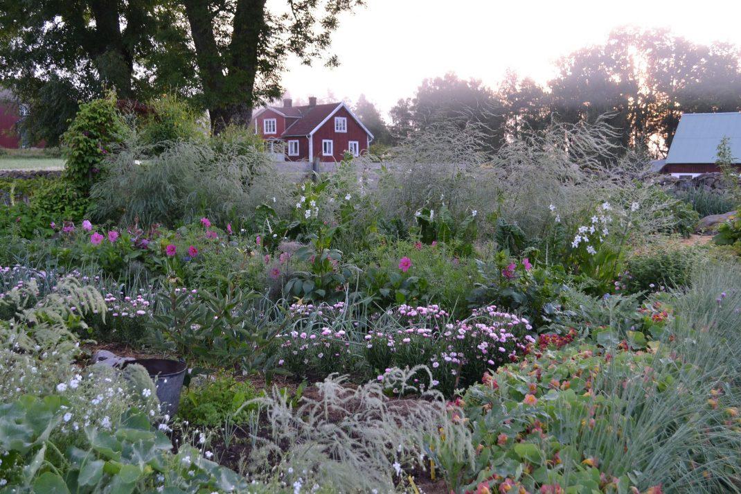 Disig köksträdgård med grönsaker och blommor.