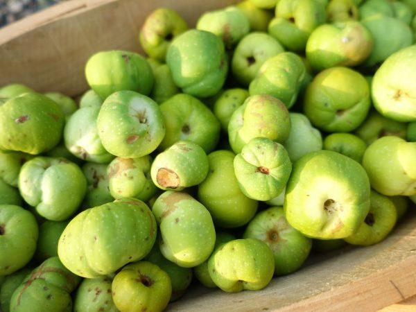 Gröngula små frukter ligger i en korg.
