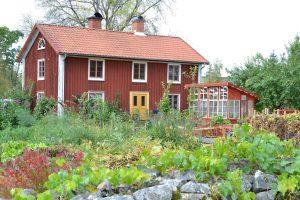 Ett rött parhus med grön trädgård och gula löv.