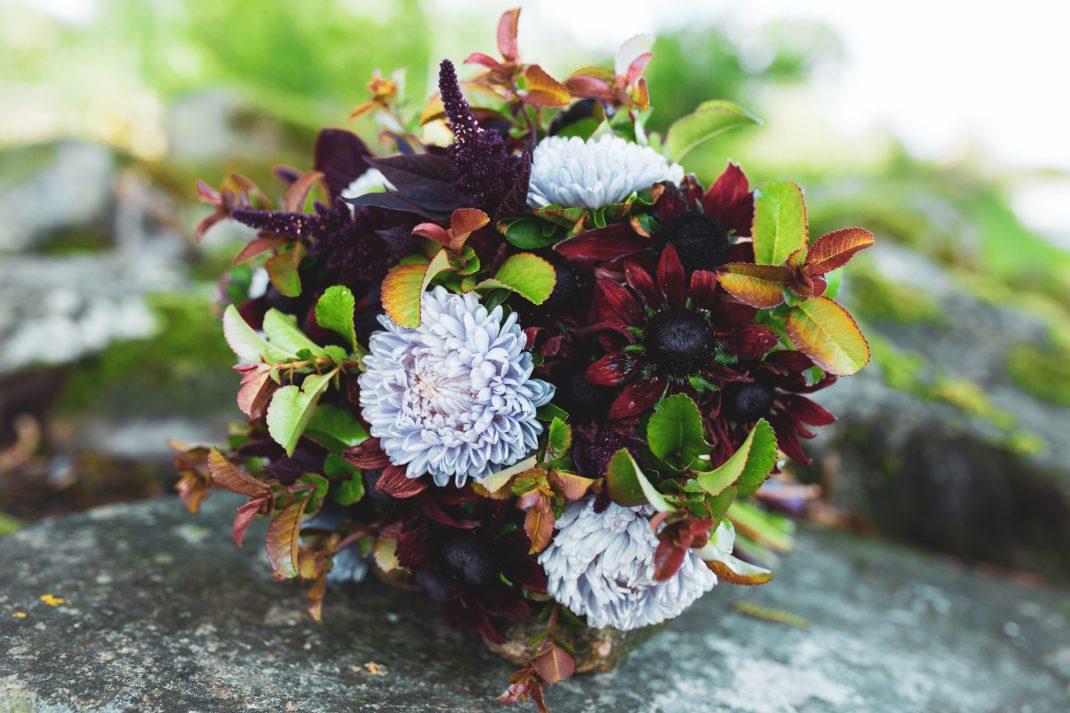 Bukett med vinröda blommor