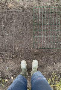 Kompostgaller på odlingsbädd fotograferade ovanifrån, stövlar syns bredvid bädden.