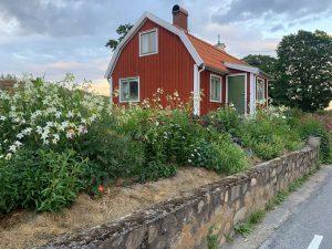 En liten röd stuga med blomsterrabatt framför.