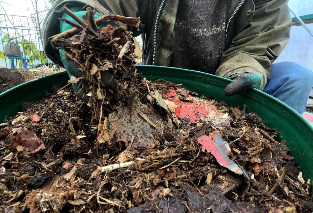 Gammalt papper och växtdelar ligger i en grön såll.