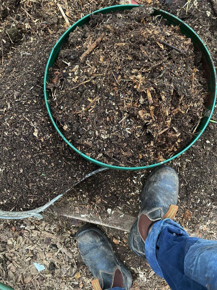 Ett såll fyllt med kompostjord.