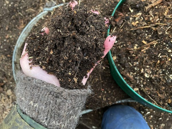 En hand håller en näve jord.