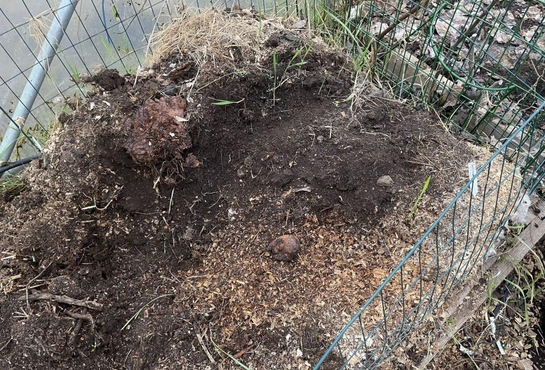 En ful komposthög i kompostgaller.