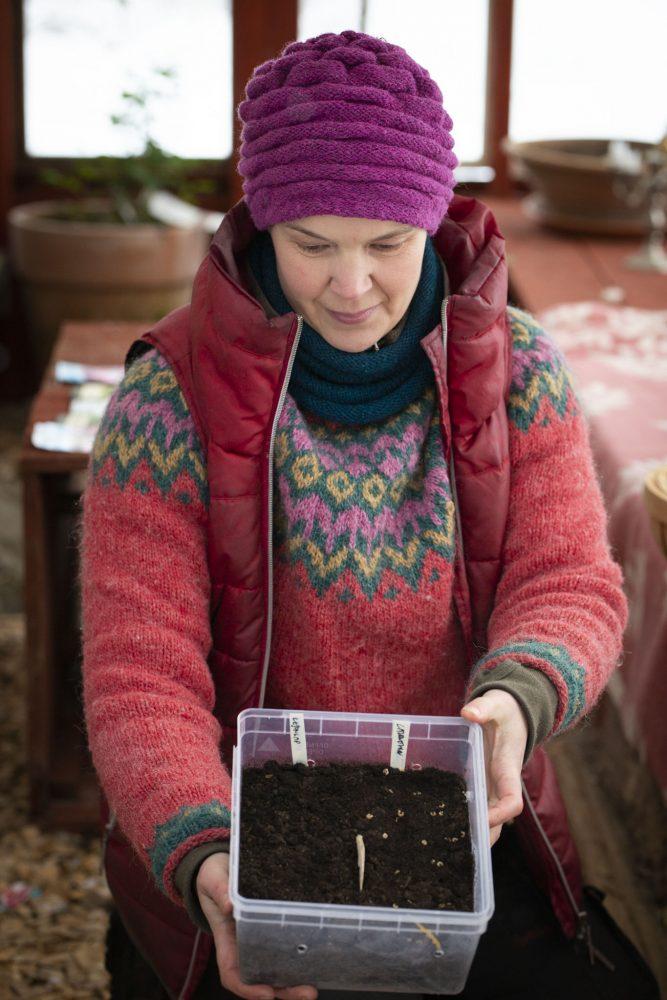 Sara håller fram en bytta med jord och fröer.
