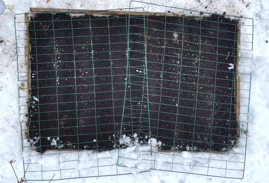En pallkrage i snö fotograferad ovanifrån, med grönt galler på toppen.
