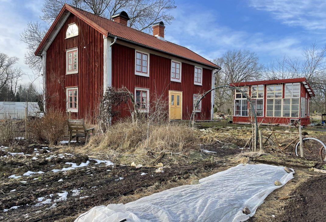 Köksträdgård framför rött hus, snö på marken.