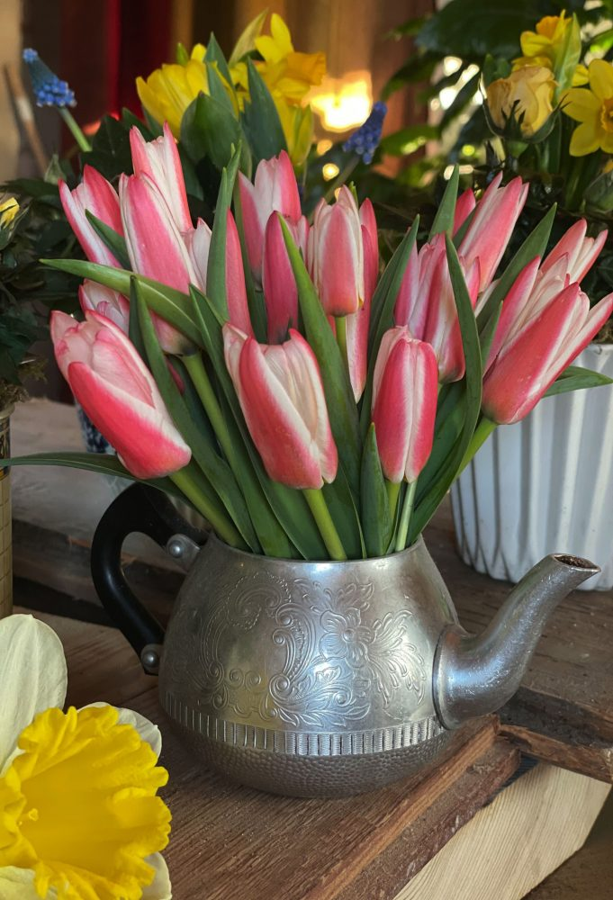 Små vita och röda tulpaner i en liten tekanna.
