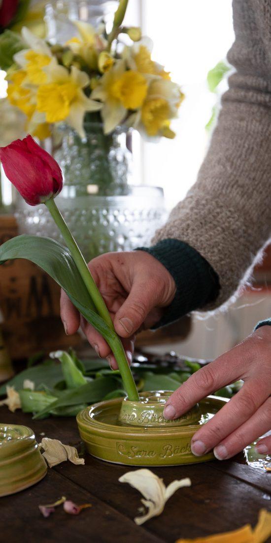 Sara sticker en röd tulpan i en blomhållare i grön keramik.