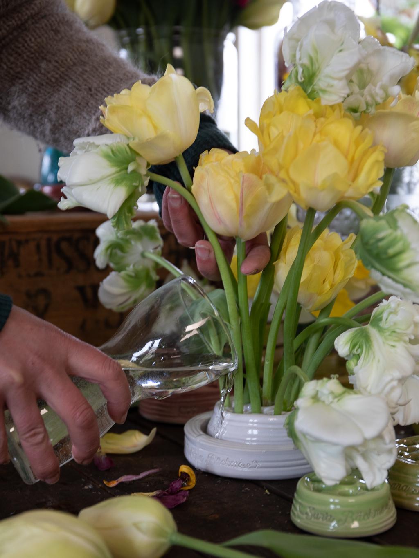 Ett gult och vitt tulpanarrangemang i blomhållare får vatten.