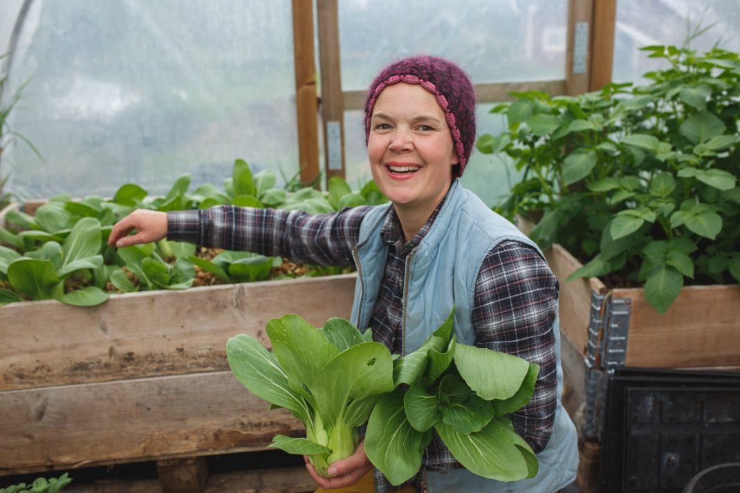 Sara skördar pak choi i växthus