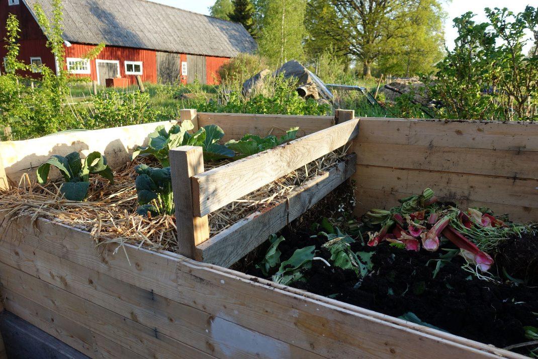 Stor övergripande bild som visar kompost i trä med två kompostfack.