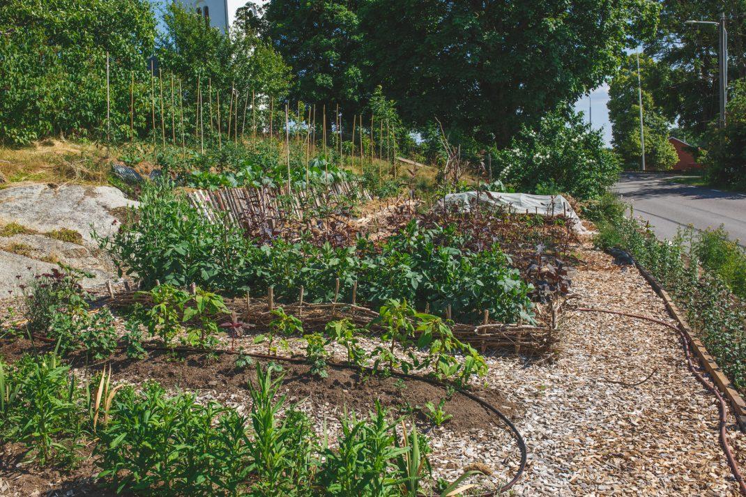 Delar av Berghems trädgård