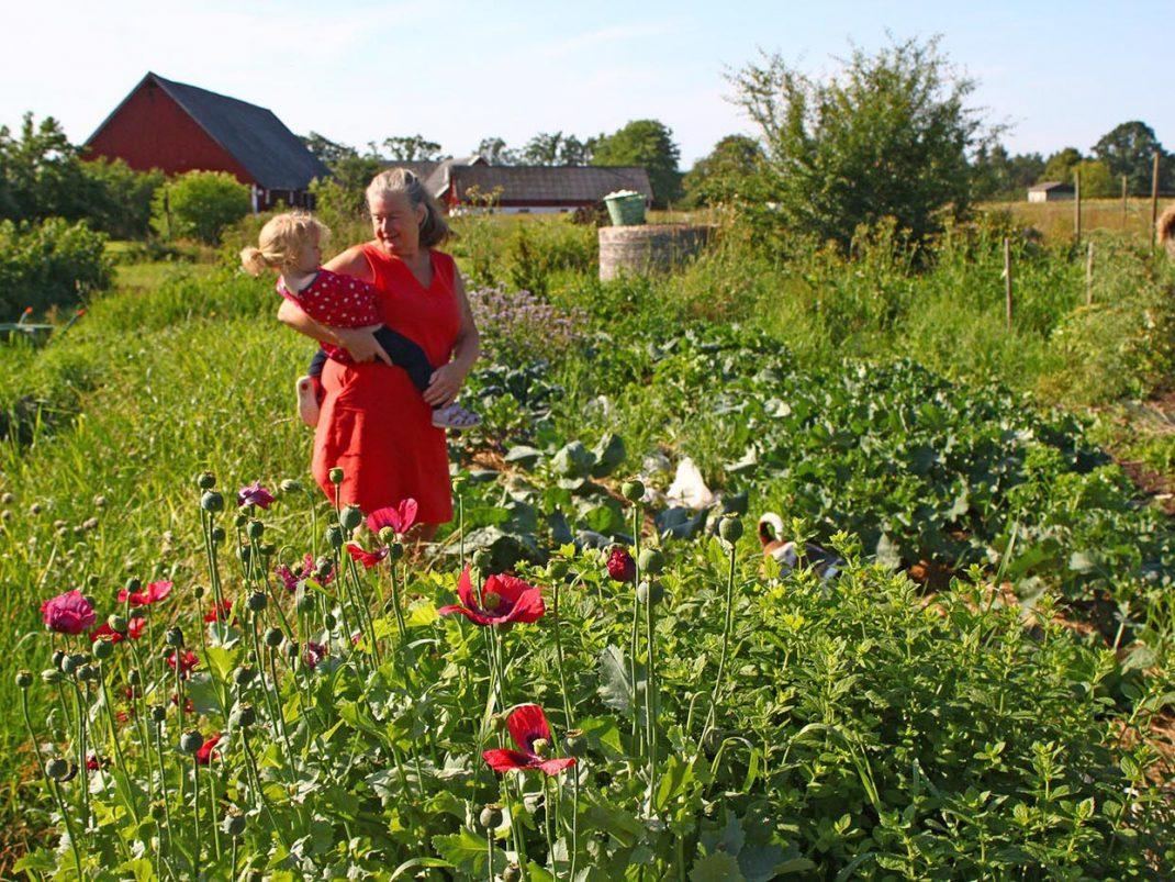 Kajsa och barnbarn i odlingen på Rinkaby gård.