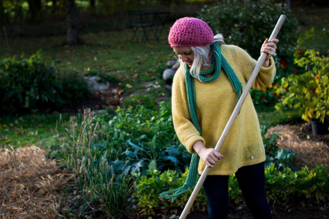 kvinna i gul stickad tröja räfsar löv.