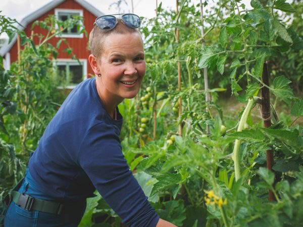 Sara tar tjuvskott på tomater