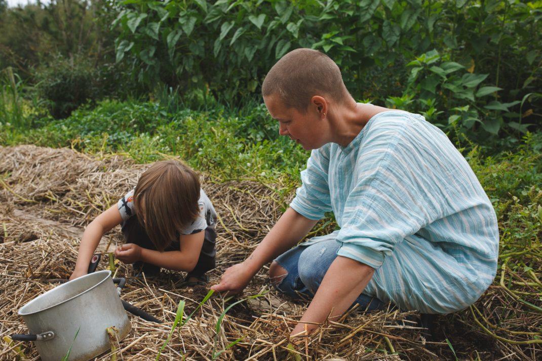 Sara och Loa i potatislandet