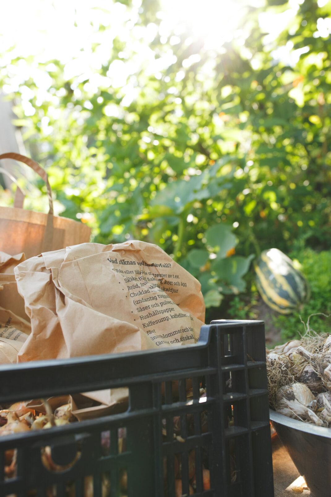 Förvara lök i papperspåsar